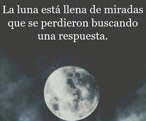 frases and luna image
