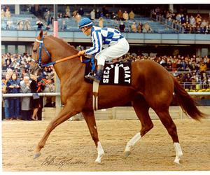 horse racing and Secretariat image