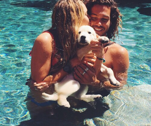 love, dog, and summer image