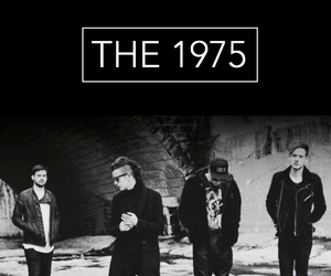 the 1975 and adam hann image