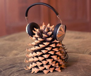 headphones, life, and fir cone image