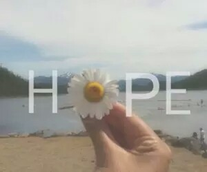 hope, flowers, and beach image