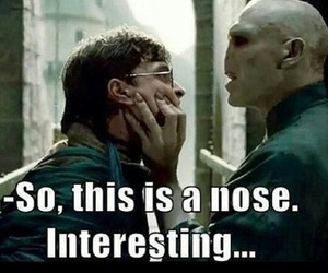 funny, harry potter, and nose image