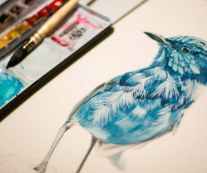 bird, blue, and drawing image