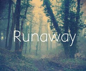 runaway, tree, and woods image