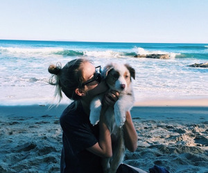 dog, beach, and girl image