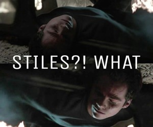 what, teen wolf, and stiles image