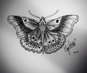 butterfly, Harry Styles, and drawing image