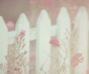 flowers, pastel, and fence image
