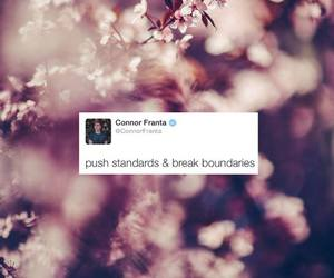 quote, connor franta, and youtube image