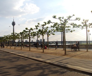 dusseldorf, germany, and summer image