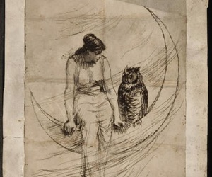 drawing, moon, and owl image