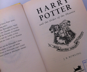 book, dumbledore, and hogwarts image