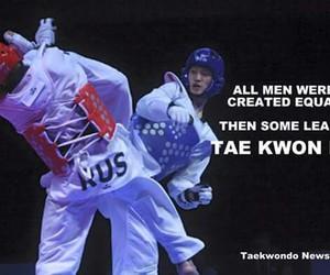 quotes, sport, and taekwondo image