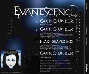 2003, fallen, and amy lee image