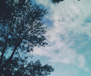 sky, tree, and nature image