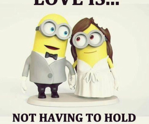 funny, minions, and love image