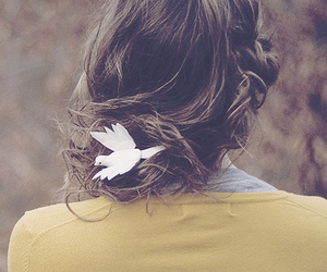 hair, girl, and bird image