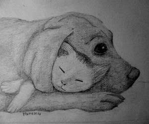 <3, animals, and art image