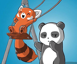 animals, family, and Red panda image