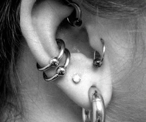 grunge, Piercings, and tunnel image