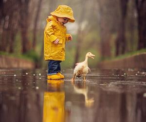 rain, cute, and duck image