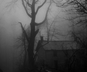 house, dark, and tree image