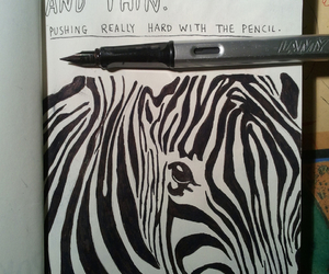 zebra, art, and wreck this journal image