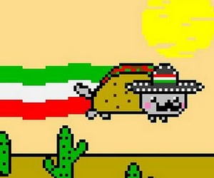 mexico, mexican, and nyan cat image