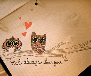 owl, love, and drawing image