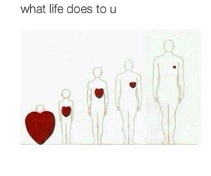 hearts, life, and people image