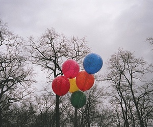 balloons, tree, and photography image