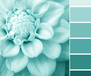 pantone, spring, and 2015 image