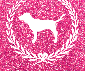 pink, wallpaper, and dog image