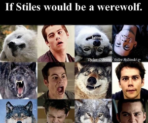 teen wolf, stiles, and werewolf image