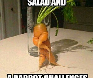 carrot, salad, and dance off image