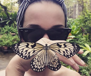 butterfly and katy perry image