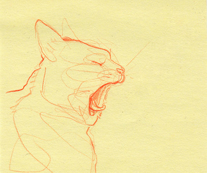 cat, drawing, and yawn image