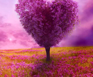 tree-love-heart-pink image