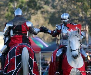 armour, horseback, and horses image