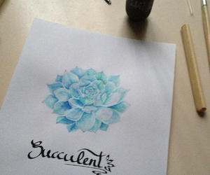 calligraphy, draw, and succulent image