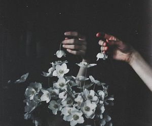 dark, flowers, and old image