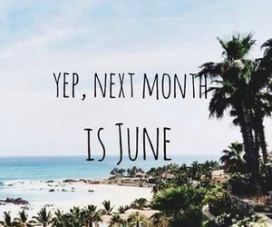 summer, june, and beach image