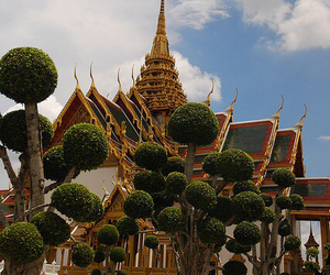 Temple and thailand image