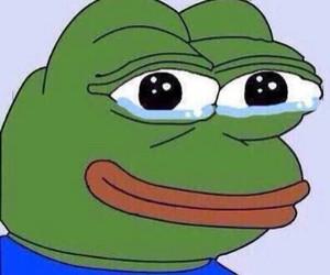 pepe, meme, and frog image