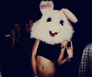 bunny, party, and night image