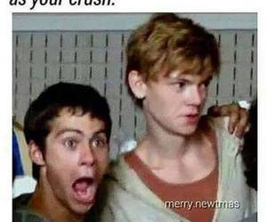 crush, funny, and dylan o brien image