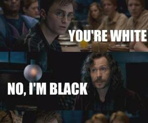 harry potter, funny, and sirius black image