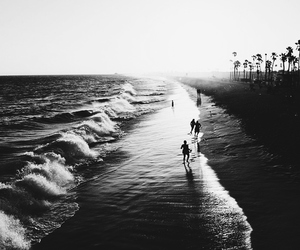 beach, summer, and black and white image