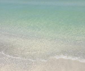 beach, florida, and home image
